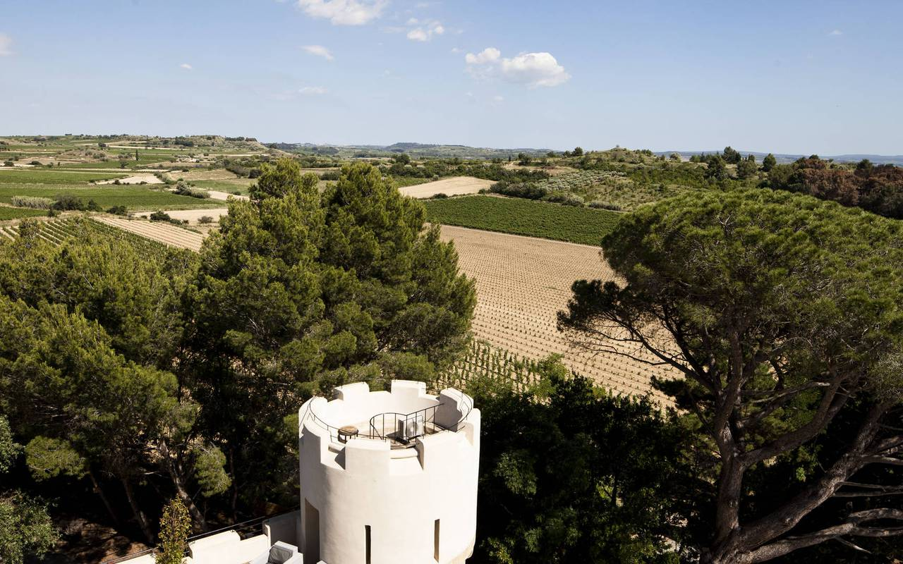 view on nature, house rental in capestang, Les Carrasses