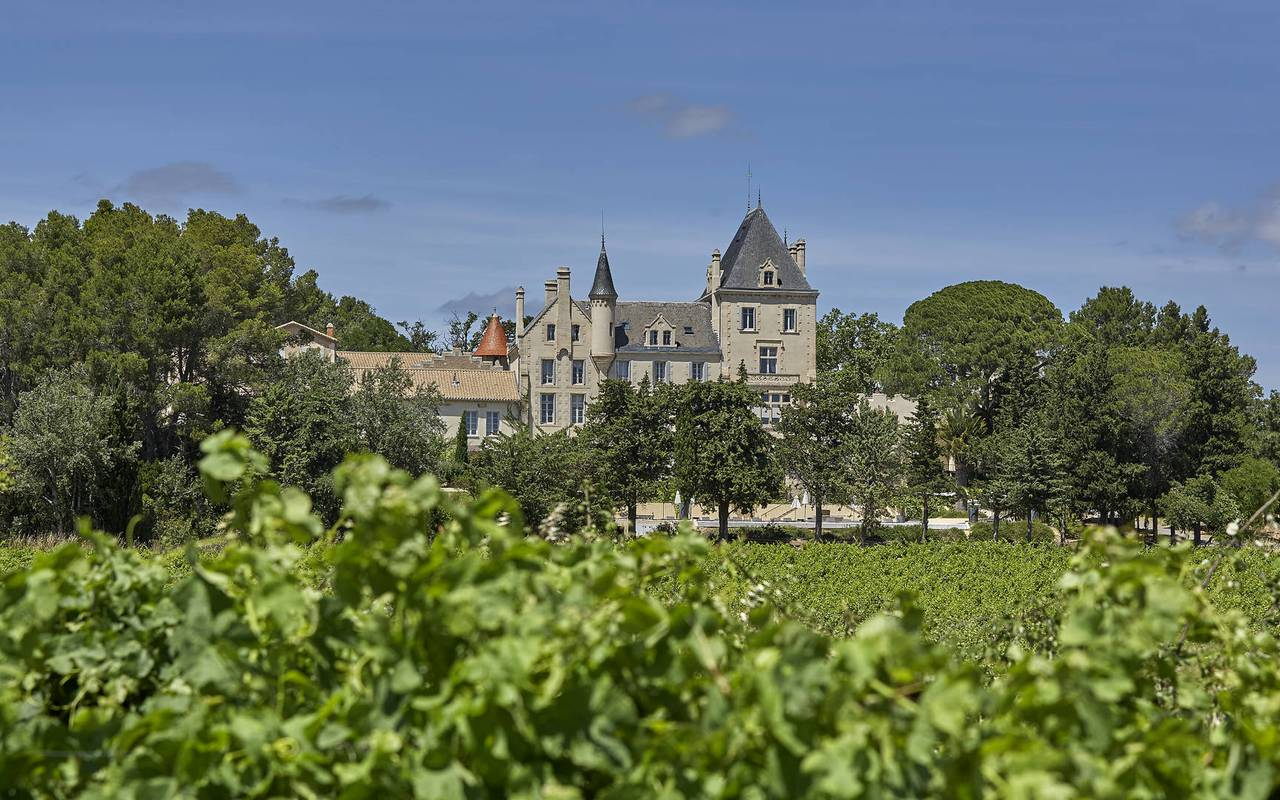château in the vineyards, herault house rental, les carrasses