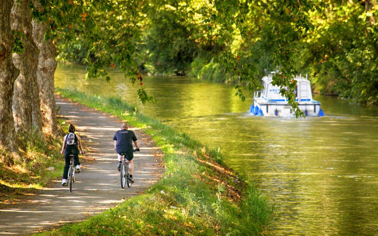 canal-du-midi-near-carrasses-unusual-night-in-languedoc-roussillon.jpg