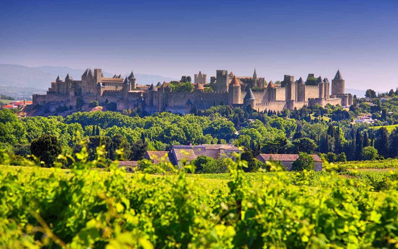 visit Carcassonne from Les Carrasses, unusual night Languedoc Roussillon