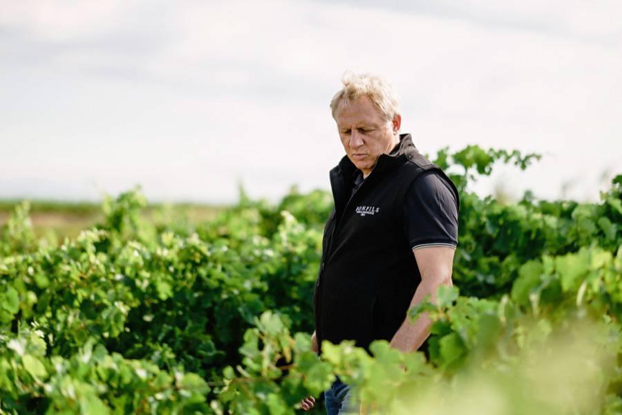 man in the vines, Hérault wine estate, les carrasses