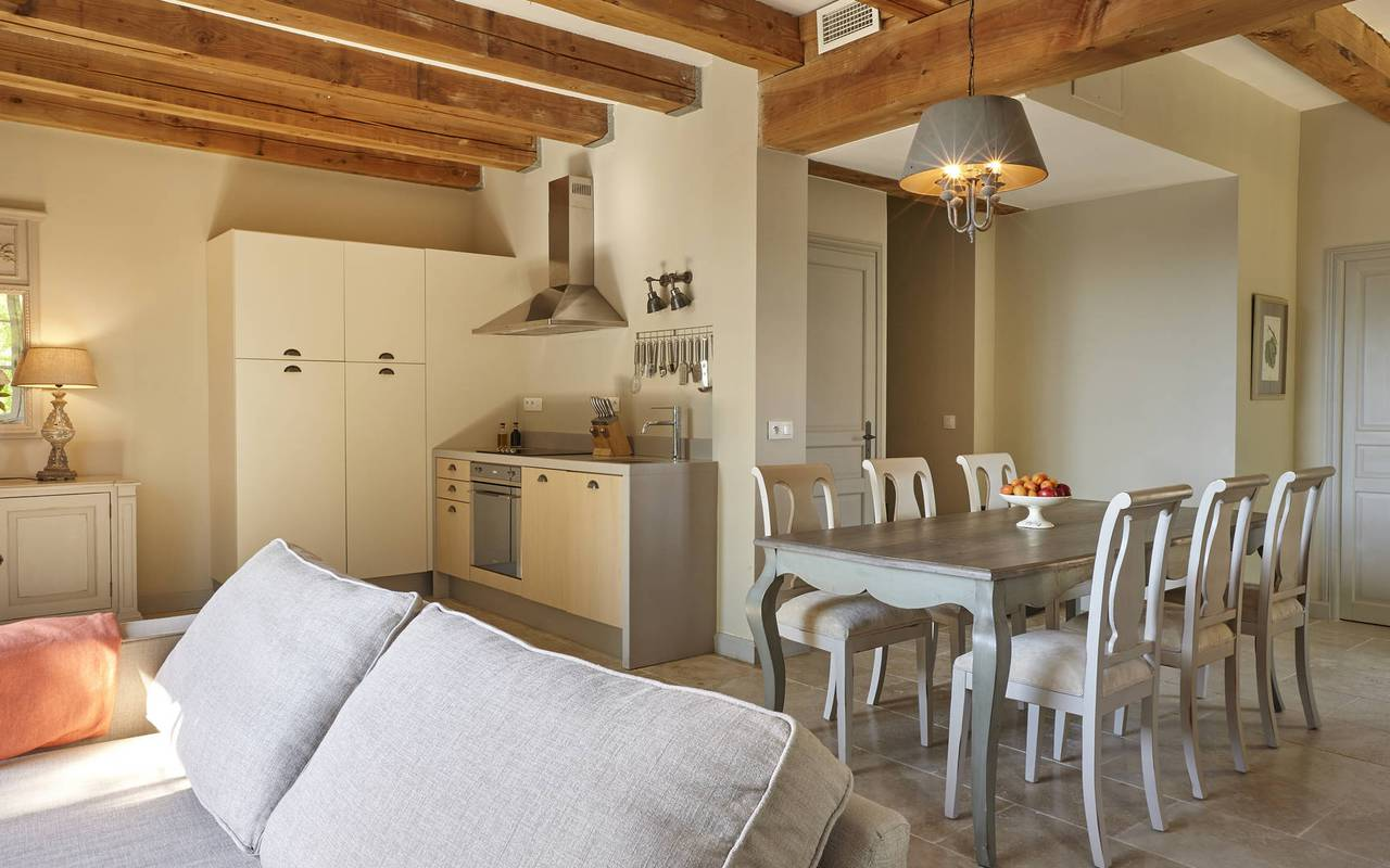 rental house with swimming pool south of france, living room and luxury kitchen