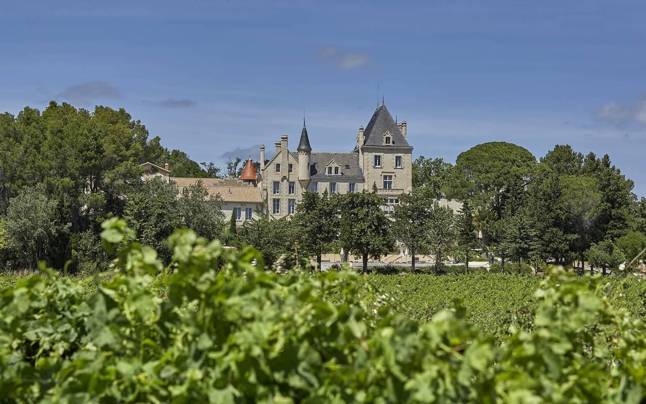 château dans les vignes, location maison herault, les carrasses
