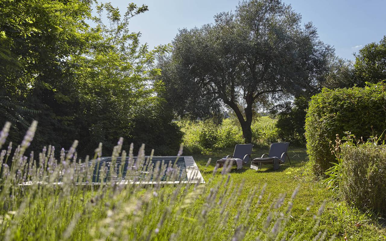Jardin intimiste avec piscine, location maison Hérault, Les Carrasses
