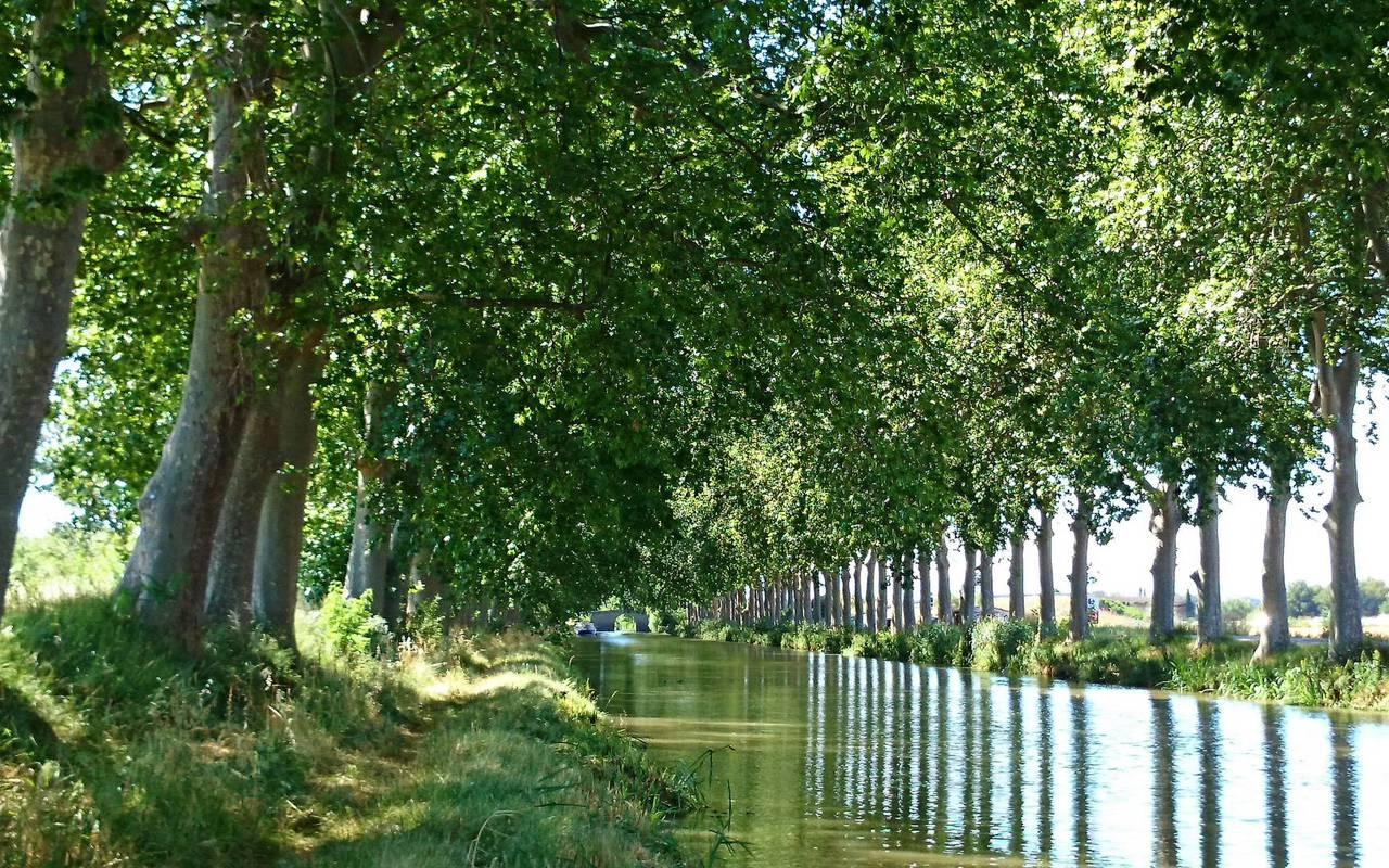 canal du midi château les carrasses nuit insolite en languedoc roussillon